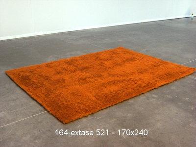 Extase - 521 - 170x240cm