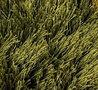 yarns - Galaxy - Moss green